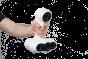 peel 2 CAD 3D scanner |3D Scan | CAD | Invent A/S|